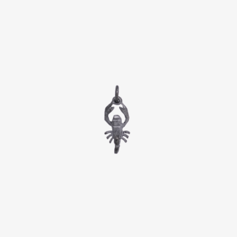 Skorpion, stjernetegn, vedhæng
